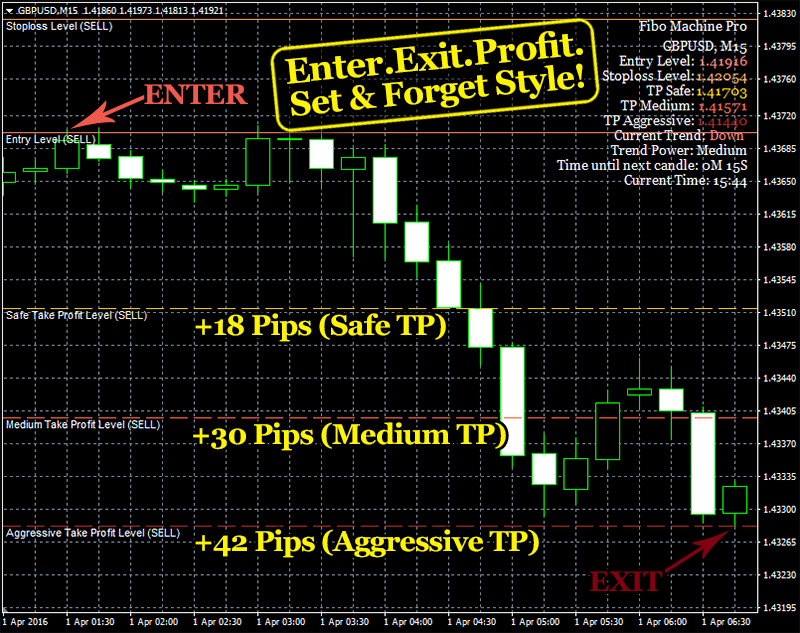 Forex edge pro review