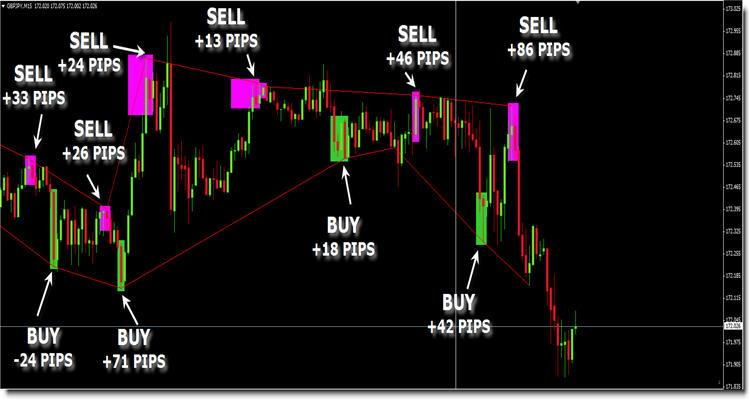 Elastic Trader Strategy Review Screenshot 2