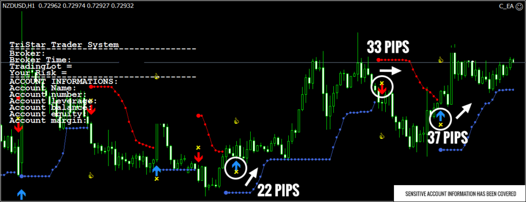 TriStar Trader Review Screenshot 2