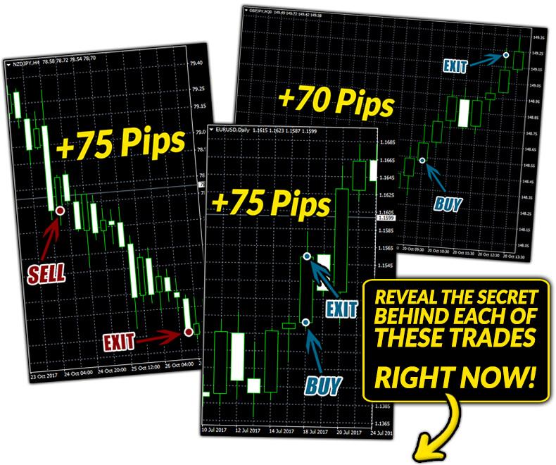 Secret Profit Matrix Review