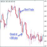 Elite Swing Trader Review