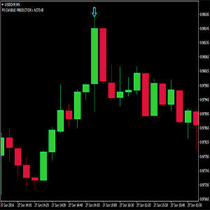 FX Candle Predictor Review