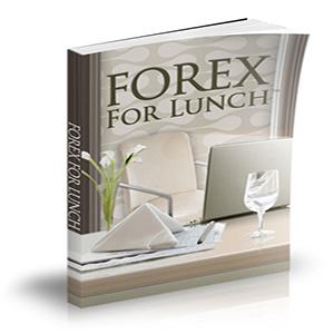 forex trading for lunch system