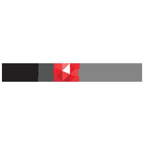 Swiss FS Logo