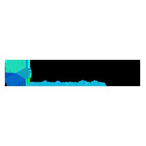 Bold Prime Logo