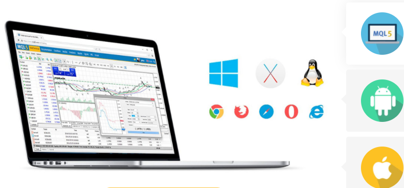 Vlom Review Trading Platform